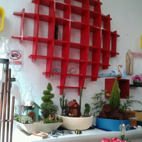 Mercado de muebles crea coyac n distrito federal for Amueblar casa completa