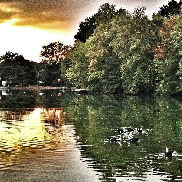 รูปภาพถ่ายที่ Piedmont Park โดย Katie M. เมื่อ 10/12/2012