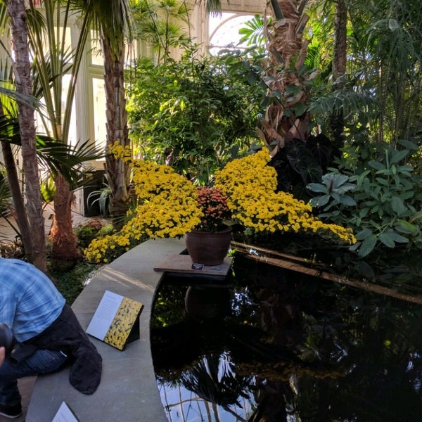 Photo taken at Enid A. Haupt Conservatory by Alvin on 10/23/2016
