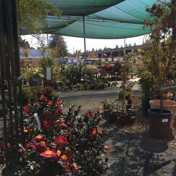 Photo Taken At Evergreen Nursery By Gilda J On 10 23 2016