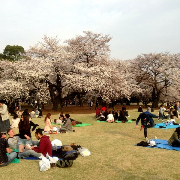 Photo taken at Shinjuku Gyoen by yet2come on 3/24/2013
