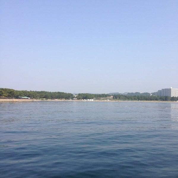 5/30/2014にtsukkeeが金沢八景 忠彦丸 釣船・釣宿で撮った写真