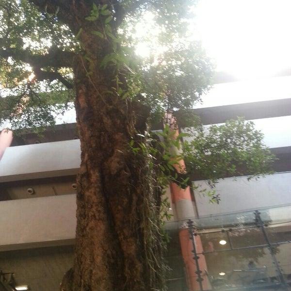 Foto tomada en Universidad Autónoma de Asunción por Alex G. el 6/30/2014
