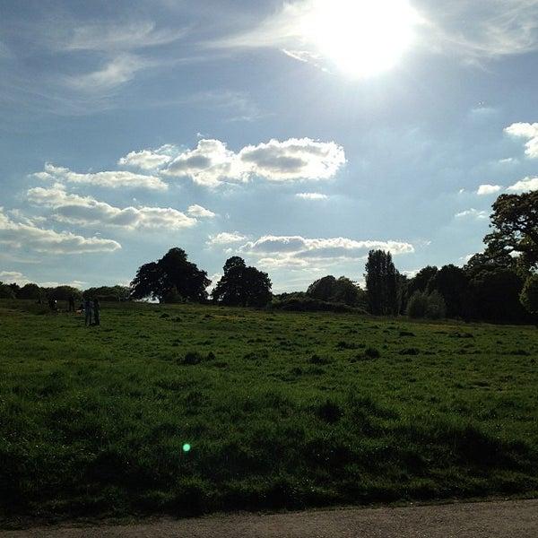 5/26/2013 tarihinde John P.ziyaretçi tarafından Hampstead Heath'de çekilen fotoğraf