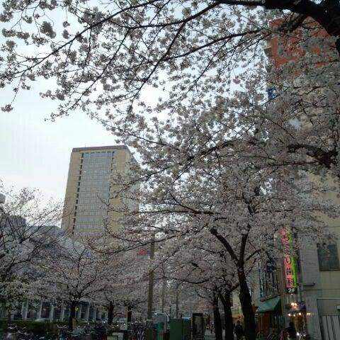 3/24/2013 tarihinde Norio Y.ziyaretçi tarafından 小川町さくらロード'de çekilen fotoğraf