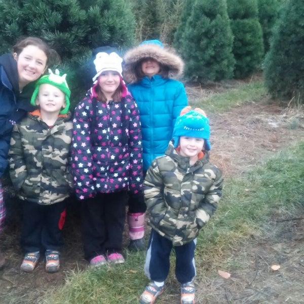 Pinecrest Christmas Tree Farm