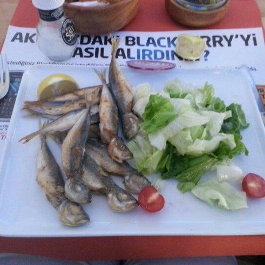 11/28/2012 tarihinde Cigdem H.ziyaretçi tarafından Fish of North'de çekilen fotoğraf