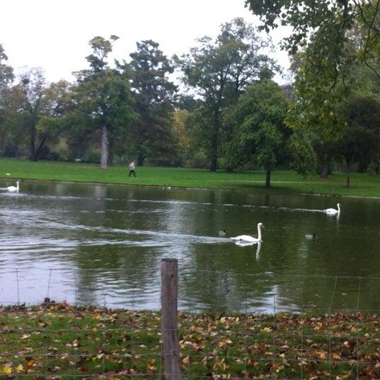 Photo taken at Lac Daumesnil by Anastasia R. on 10/20/2012