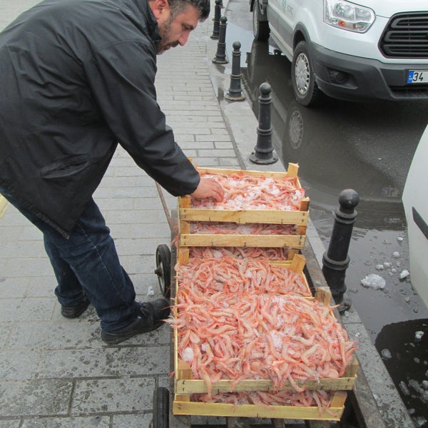 Fish market hobyar 1 tip for Fresh fish market houston