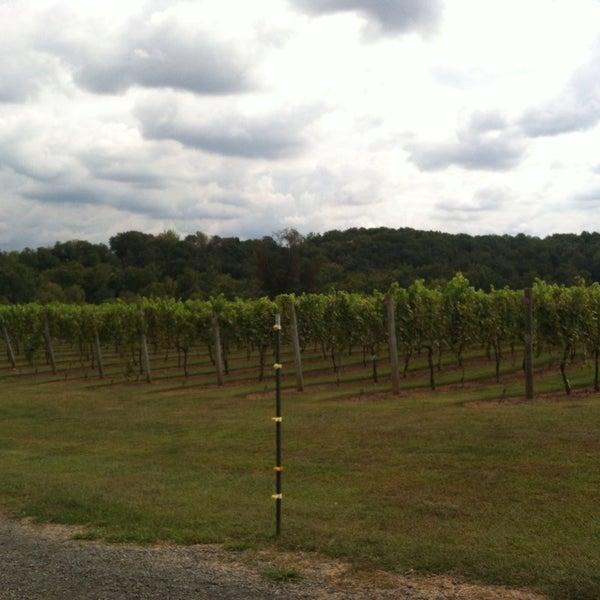 Photo taken at Three Fox Vineyards by Karen B. on 9/27/2013