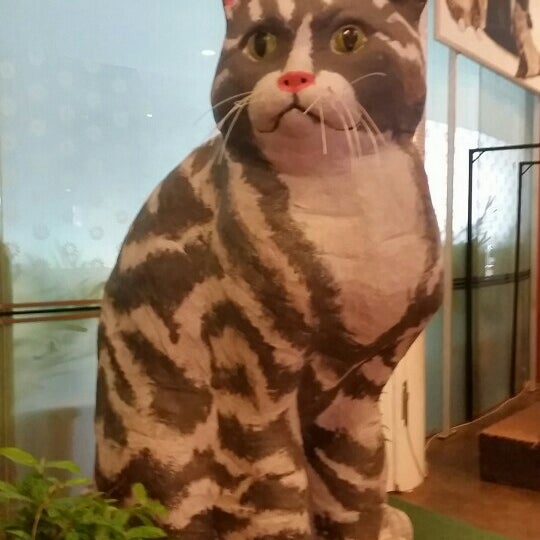 Photo taken at Muzium Kucing (Cat Museum) by gracie abigael on 2/28/2016