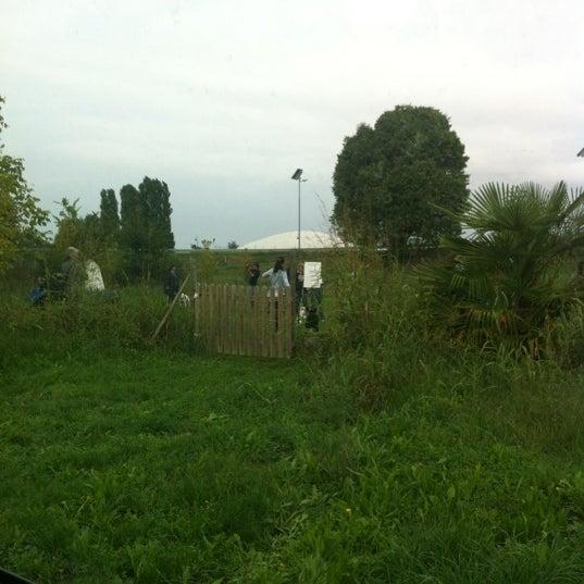 Foto scattata a Parco Fenice da Miki P. il 9/30/2012