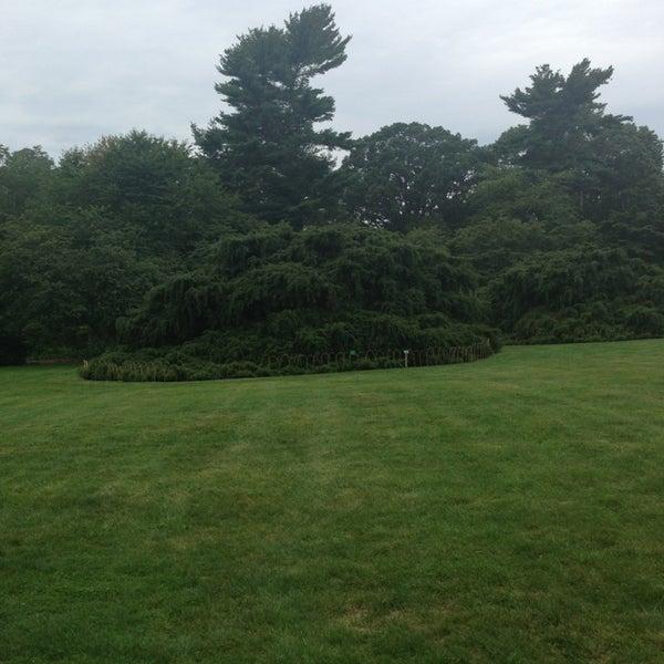 Photo taken at Planting Fields Arboretum by Stella K. on 8/18/2013