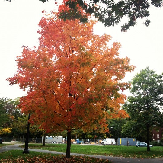 Photo taken at Cornell University by Anna W. on 10/7/2012