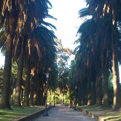 Photo taken at Parque José Enrique Rodó by Lizz F. on 10/25/2012
