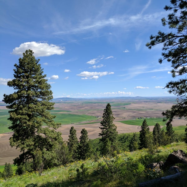 kamiak butte Book now at 0 restaurants near kamiak butte state park on opentable explore reviews, photos & menus and find the perfect spot for any occasion.