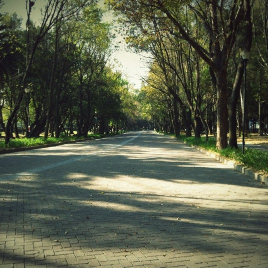 Photo taken at Bosque de Chapultepec by Evelyn F. on 11/28/2012