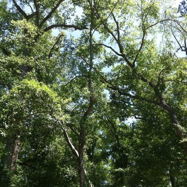 Photo taken at Lexington, SC by PhyllisAnne P. on 5/25/2013