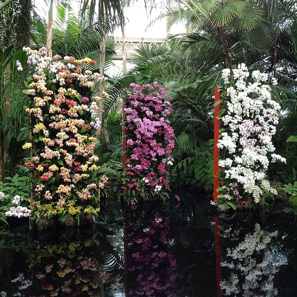 Photo taken at Enid A. Haupt Conservatory by Chris C. on 3/15/2014