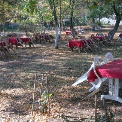 11/4/2012 tarihinde Tolga ç.ziyaretçi tarafından Yeşil Çiftlik Restaurant'de çekilen fotoğraf