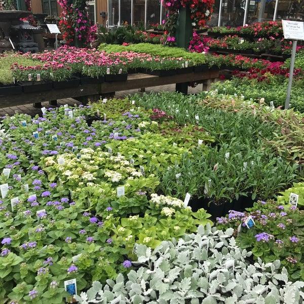 The Garden Barn Nursery Flower Shop