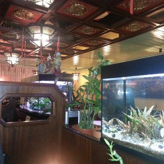 china restaurant hong kong 6 visitors. Black Bedroom Furniture Sets. Home Design Ideas
