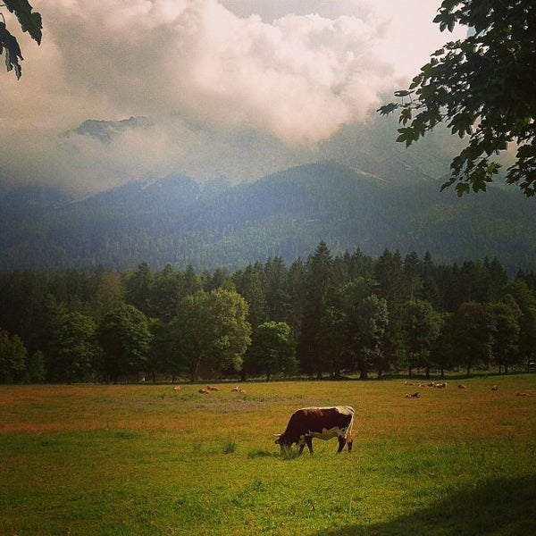 Photo taken at Edelweiss Lodge and Resort by Kristine G. on 8/23/2013
