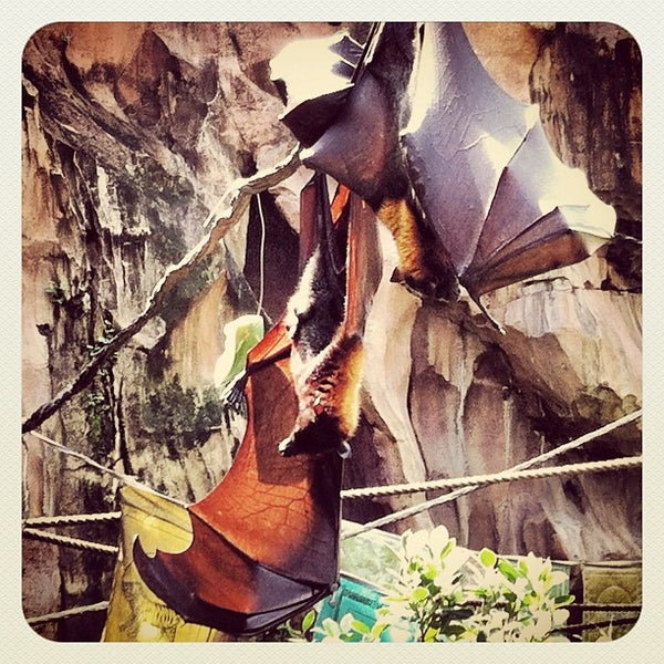 Photo taken at Maharajah Jungle Trek by Rajendra S. on 10/5/2012