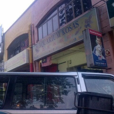 Aquarium kosas pet store in ampang for Fish store houston