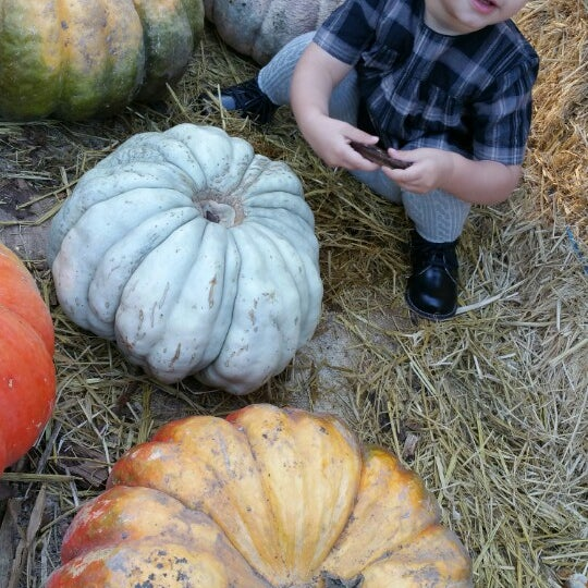Photo taken at Clancy's Pumpkin Patch by Nathan E. on 10/26/2014