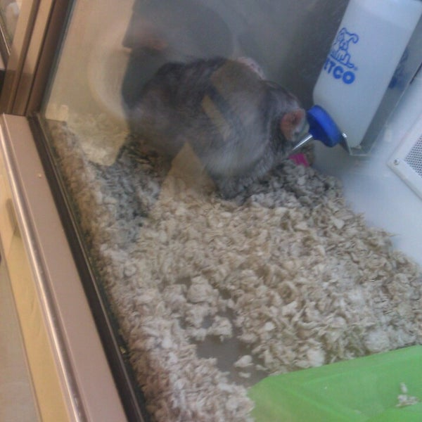 Photo taken at Petco by Crystal S. on 4/5/2013