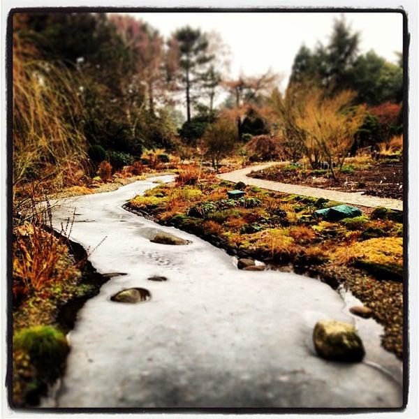 Loki Schmidt Garten: Neuer Botanischer Garten - Osdorfの植物園