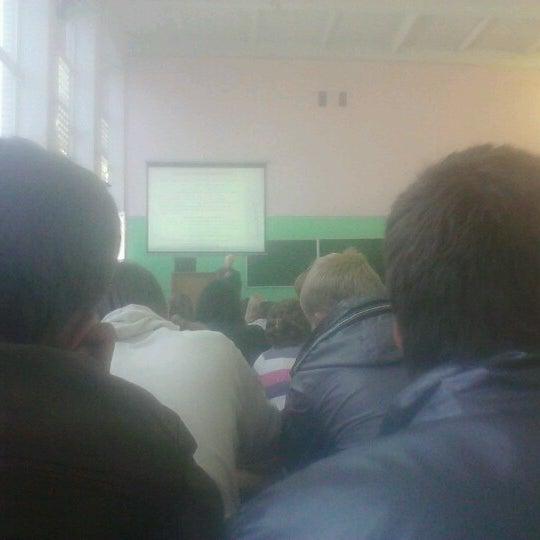 Процесс обучения:)