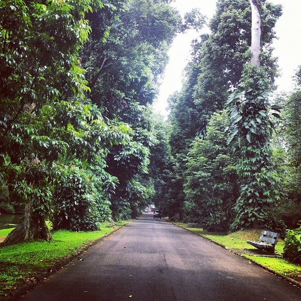 Bogor Botanical Gardens: 183 Tips From 17333 Visitors