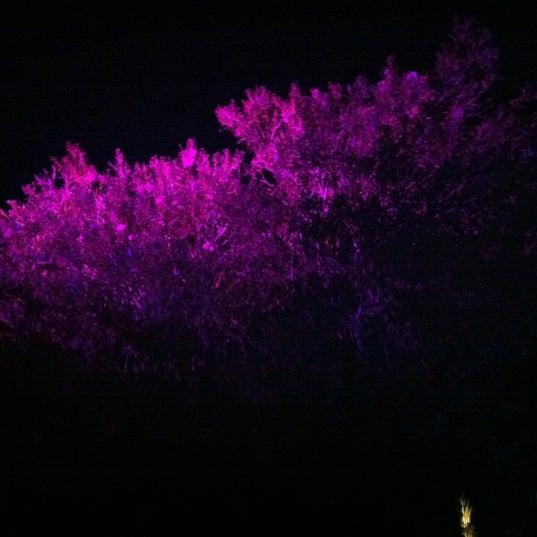 9/2/2012 tarihinde LOUIS D.ziyaretçi tarafından NewOld Club'de çekilen fotoğraf