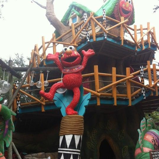 Sesame street safari of fun playground in tampa - Can you bring food into busch gardens ...