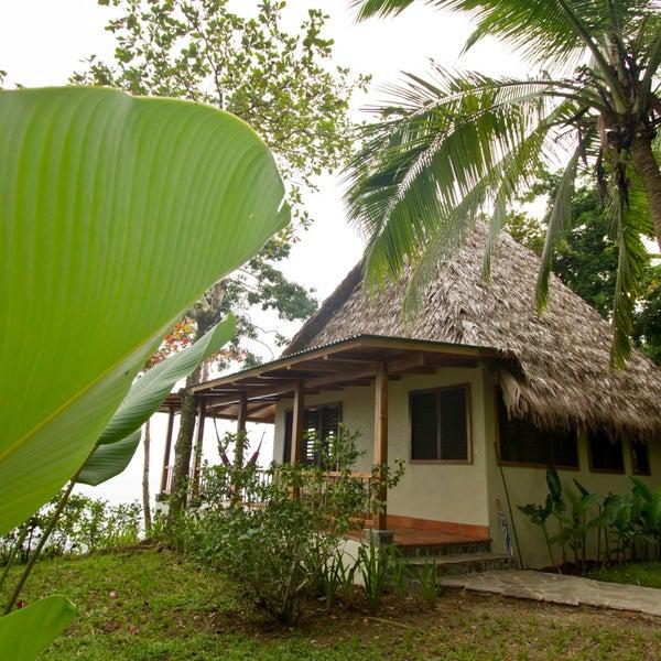 Osa Peninsula Costa Rica Hotels: Near Puerto Jimenez, Osa Peninsula