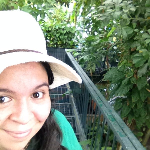 Photo taken at Enid A. Haupt Conservatory by Carolyne C. on 7/1/2014