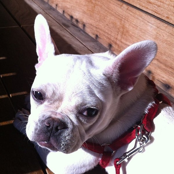 Photo taken at Dusty's by Caroline G. on 12/31/2012