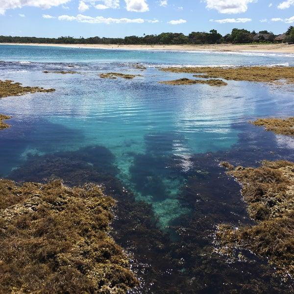 Fiji Beaches: Natadola Bay, Fiji
