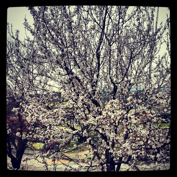 3/2/2013 tarihinde Ozan Eziyaretçi tarafından Çamlı Kahve'de çekilen fotoğraf
