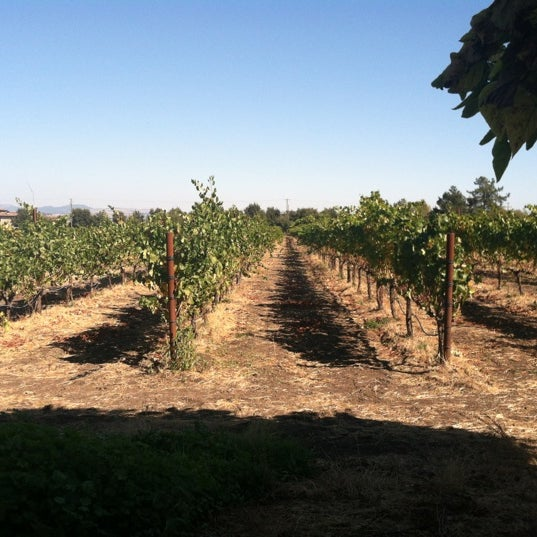 Photo taken at Cline Cellars by Michelle D. on 10/1/2012