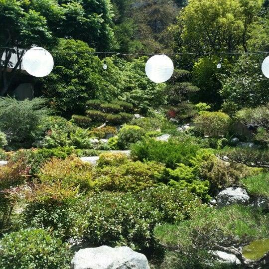 James Irvine Japanese Garden At The Jacc Garden In Los