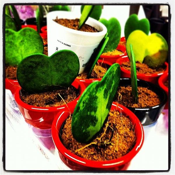 Photo taken at IKEA by Yana on 10/1/2012