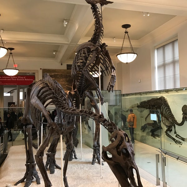 Photo taken at David H. Koch Dinosaur Wing by Tom B. on 3/31/2017