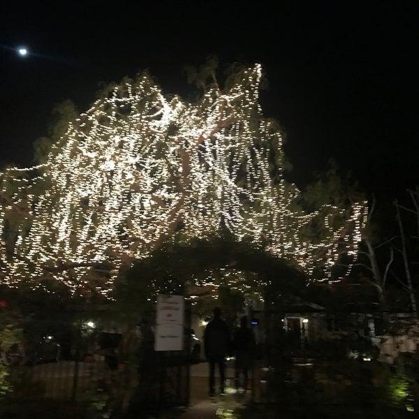 Woodland Hills Christmas Lights