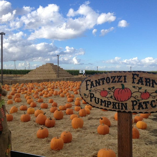 Photo taken at Fantozzi Farms Corn Maze and Pumpkin Patch by Renee V. on 10/25/2014