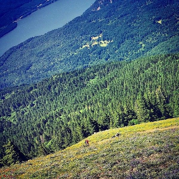 Photo taken at Wahclella Falls Trail by Jason L. on 6/8/2014