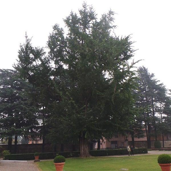 Photo taken at Villa Visconti Borromeo Litta by Fabio F. on 10/20/2013
