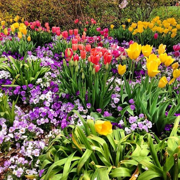 Foto tirada no(a) Dallas Arboretum and Botanical Garden por Carter S. em 3/30/2013
